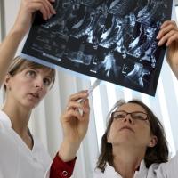 Arztpraxis. Aerztin arbeitet an ihrem Schreibtisch, schaut Patientenunterlagen, MRT-Bilder, durch, Besprechung mit einer Praxismitarbeiterin.